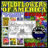 WILDFLOWERS of America Book and Activity Bundle