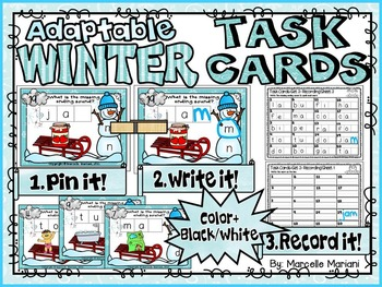 WINTER-ENDING Sounds-ADAPTABLE TASK CARDS- Color & Black/White