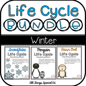 WINTER Life Cycle BUNDLE - Snowflake, Penguin and Owl inte