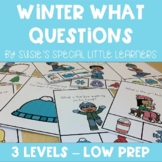 WINTER  WH QUESTIONS FOR SPECIAL ED AND SPEECH THERAPY