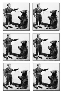 WOJTEK THE SOLDIER BEAR  - World War Two Word Search