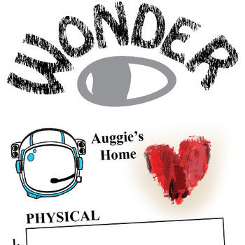 WONDER Palacio R.J. Novel Setting Organizer - Physical & Emotional