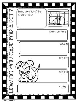 Weekly Writing Activity 2nd Grade WONDERS