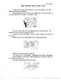 WONDERS- First Grade, Unit 4.1 Comprehension test