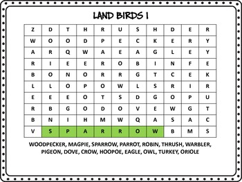 BIRDS Word Search, Black and White