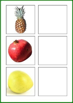 Fruits & Berries Word to Picture Matching Activity