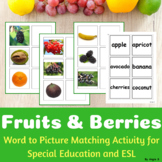 Fruits and Berries Word to Picture Matching Activity