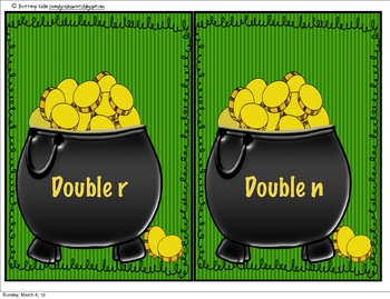WORD WORK: Fill the Right Pot! Double Consonants Ending in Y