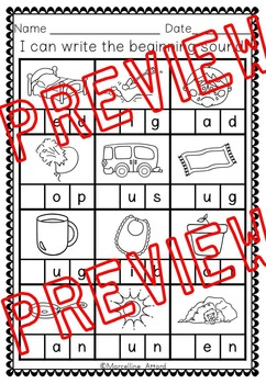 WORD WORK ACTIVITIES (DIFFERENTIATED CVC WORKSHEETS)