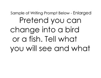 WRITING PROMPT Point-of-View Choice of Writing as a Bird or as a Fish Creativity