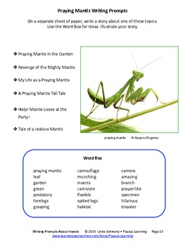 WRITING PROMPTS ABOUT INSECTS