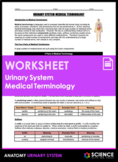 Worksheet - Urinary System Medical Terminology (HS-LS1)