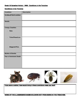 WWI Conditions in the Trenches Worksheet