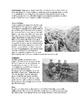 WWI Trench Warfare