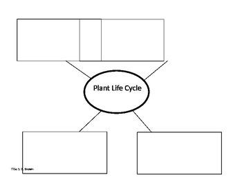 Wacky Plant Life Cycles