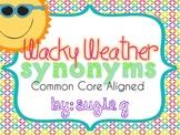 Wacky Weather Synonyms