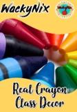 WackyNix Real Crayon Class Decor