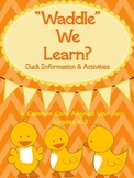 """""""Waddle"""" We Learn?  Ducks:  Information & Activities"""
