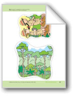 Walk in the Rainforest: Storyboard Pieces