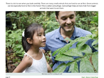 Walking Rainforest Trails - A Primary Source PDF