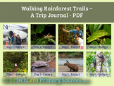 Walking Rainforest Trails -  A Primary Source PDF Free Content