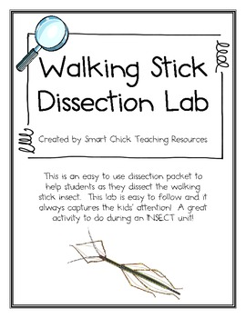 Walking Stick Dissection Lab Packet