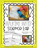 Walking Water STEM Science lab activity