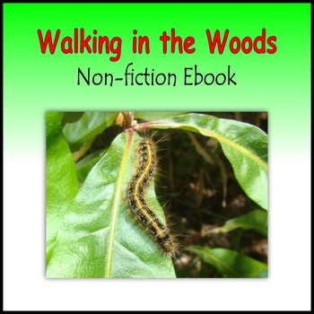 Walking in the Woods (Non-fiction E-book)