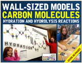 Wall-Sized Carbon Molecules: Hydration & Hydrolysis Reacti