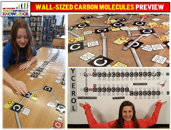 Wall Sized Carbon Molecules: Triglycerides