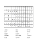 Wally's Misadventure Easy Crossword Answer Key
