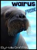 Walrus FREEBIE {Informational Book, Craft, Comprehension,