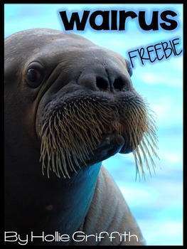 Walrus FREEBIE {Informational Book, Craft, Comprehension,