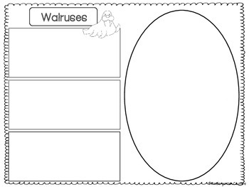 Walrus Graphic Organizers  -Freebie