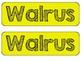 Walrus KWL Chart