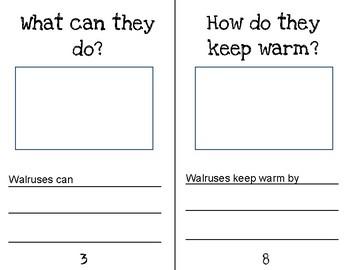 Walrus Research Journal