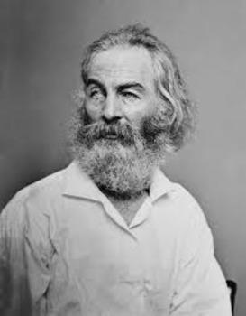 Walt Whitman Packet