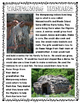 Wampanoag & Pilgrim Life {Non-Fiction} Close Readings