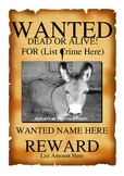 Wanted Poster Template (Word Doc)