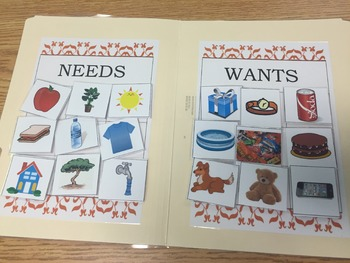 Wants and Needs File Folder Sort