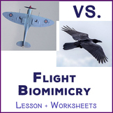 War of the Wingalings - Bird vs Airplane Biomimicry Lesson