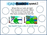Warm blooded and cold blooded animals sorting game