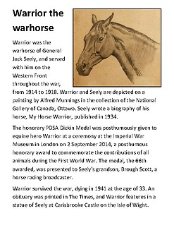 Warrior the warhorse Handout