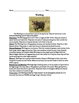Warthog - Review Article Questions Vocabulary Word Search