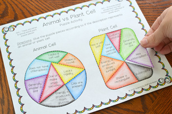 Animal vs Plant Cell Puzzle Activity