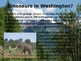 Washington State History PowerPoint - Part II