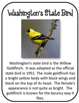 Washington State History Unit. US State History. 34 Pages!
