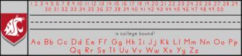 Washington State / WSU Name Plates / Tags