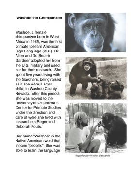 Washoe the Chimpanzee