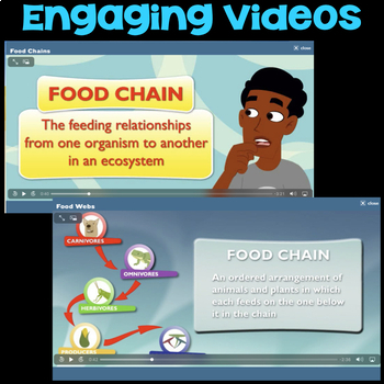 Watch a Video about Food Chains - Ecosystems and Biodiversity Science Station